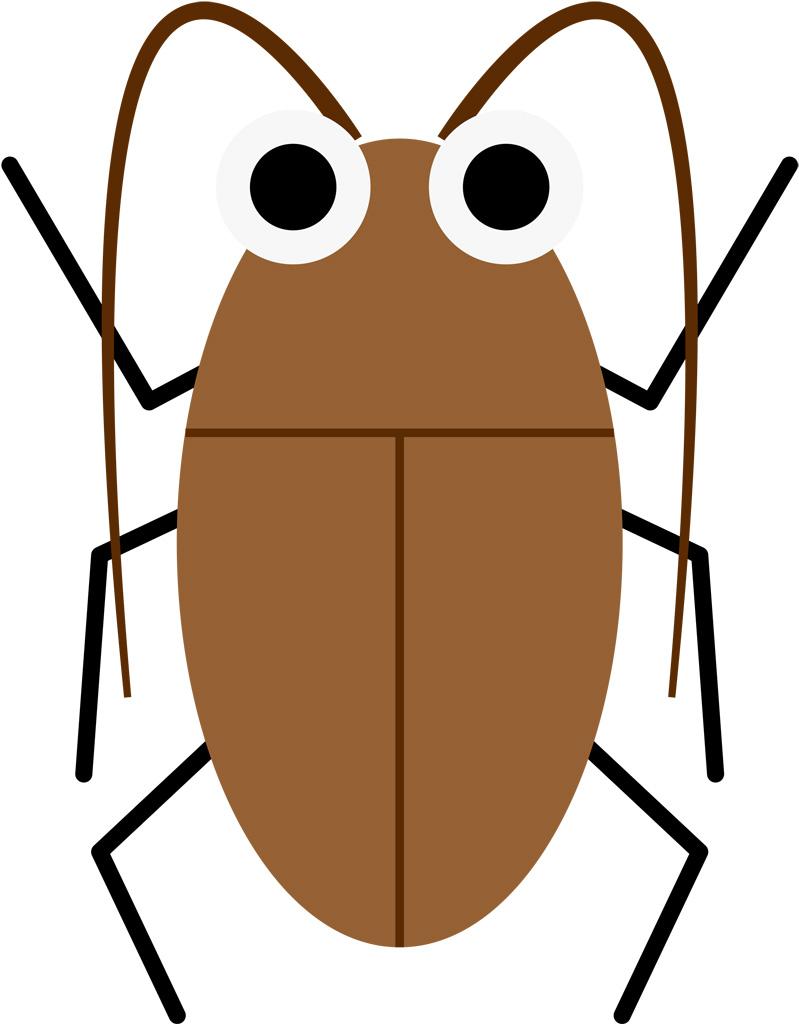 ゴキブリ雑学ゴキブリの活動時間は何時ごろ